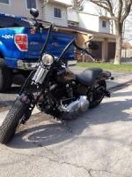 2008 custom crossbone for sale